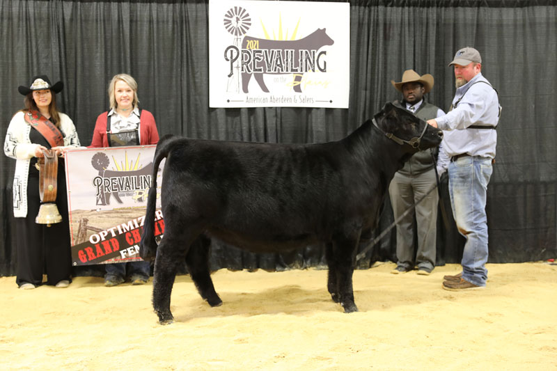 Grand Champion Optimizer Female